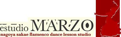 フラメンコ教室 スタジオ マルソ